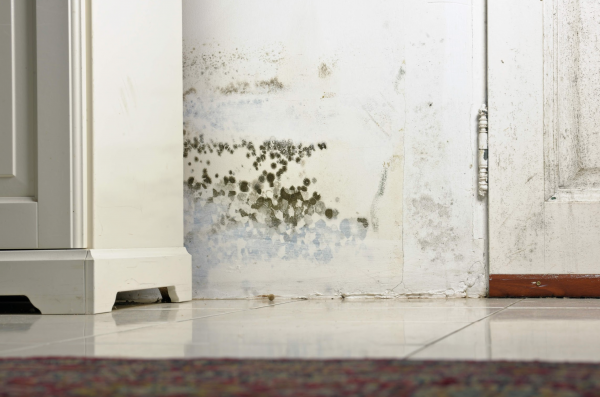 water damage chandler, water damage restoration chandler, water damage repair chandler,